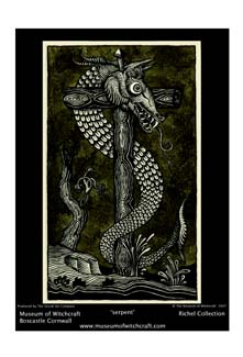 SERPENT PRINT - LARGE